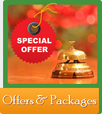 Offers & Packages